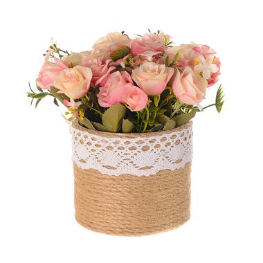 Растение в горшке Дикий куст Шиповника розовый