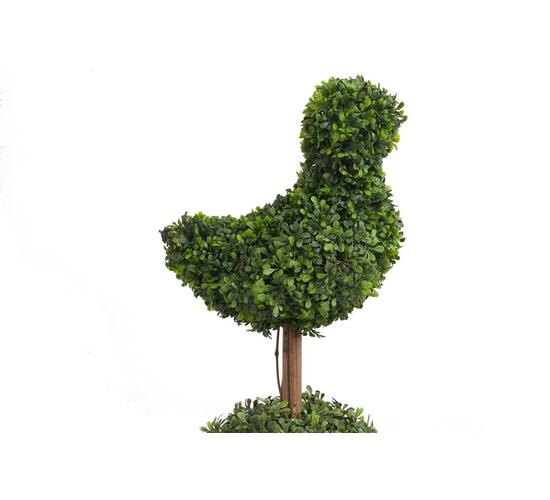 Декоративный цветок в горшке Baby Bird Piccolo