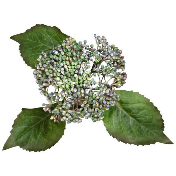 Цветок 45 см RBF1006DP